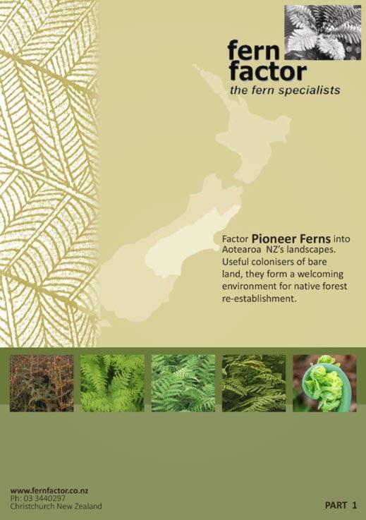 Publication - Pioneer Ferns Part 1